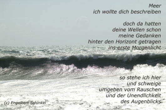 Moewen Am Strandmoewen Fotos Gedichte Mlkaschnitz A
